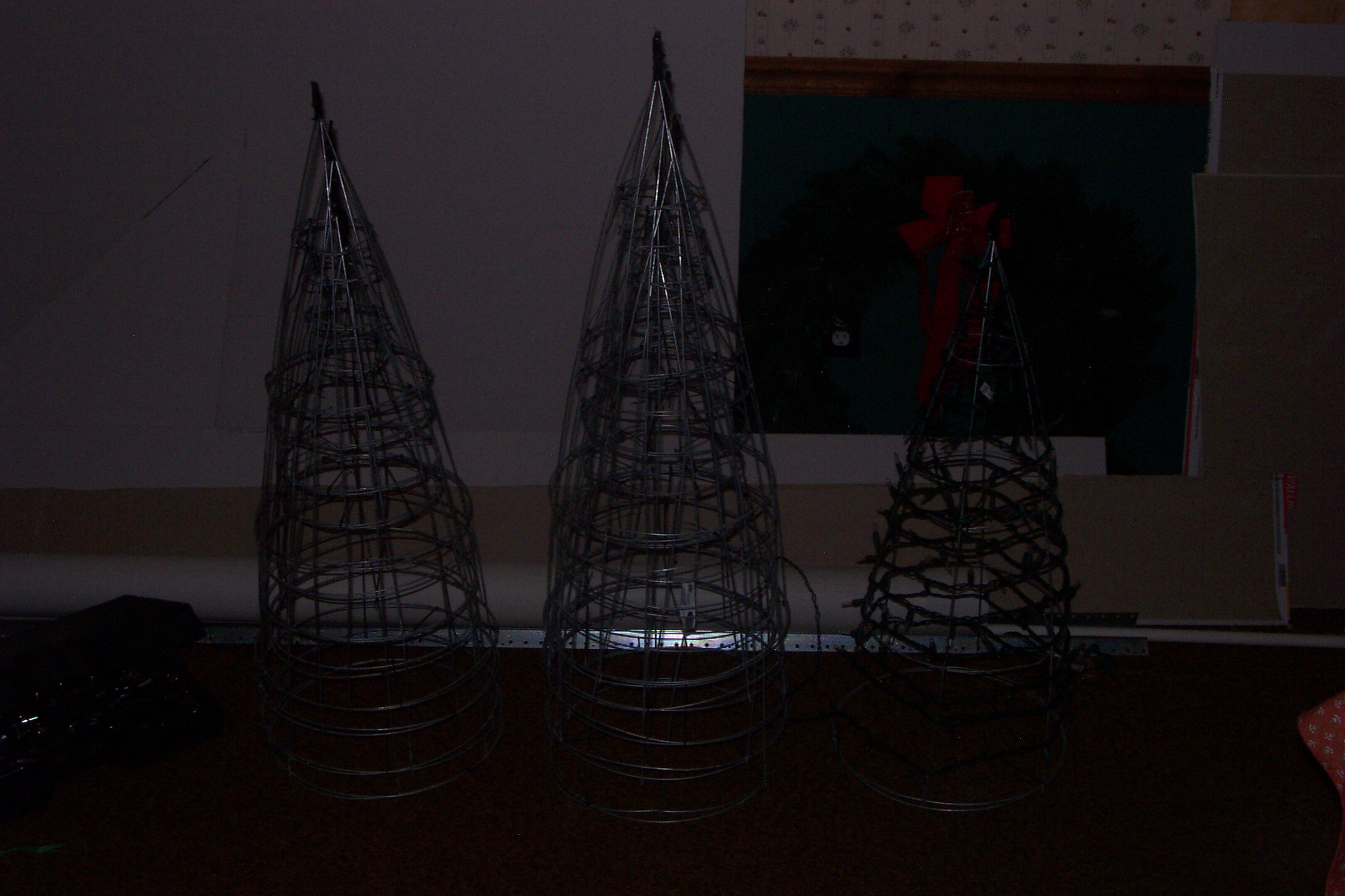 Yeah, most people see tomato cages, we see mini trees.